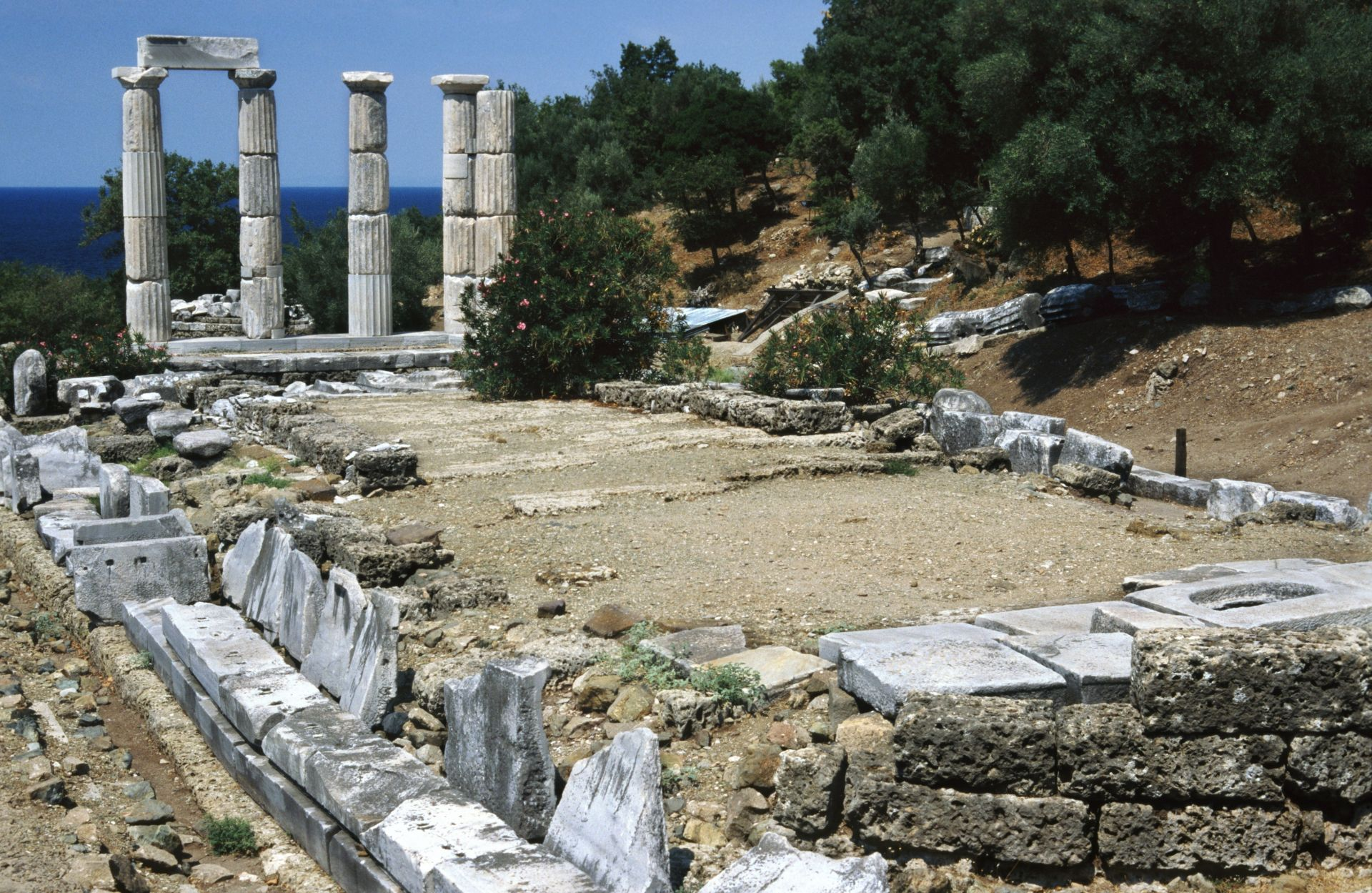 an overview of the great cities and lives in ancient greece The rise of ancient greece updated on  by growth and development in all aspects of greek life and  alexander the great, continued to rule greece.